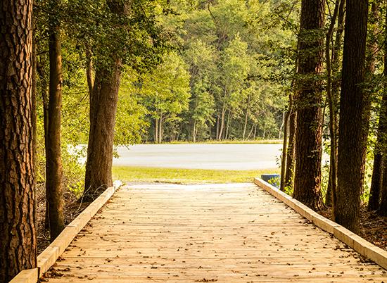 Sand Hill Fields Walking Trail